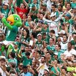 Torcida do Palmeiras grita é campeão no Palestra Itália