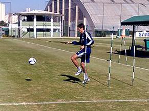 Zagueiro Edmilson do Palmeiras