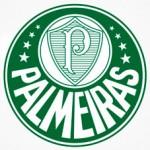 Palmeiras poderá ter reforços no próximo jogo contra o Náutico