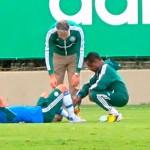 O volante Charles do Palmeiras vai enfrentar o Figueirense mesmo com o dedão roxo