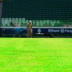 Palmeiras vende 12 mil ingressos para o jogo contra o Linense